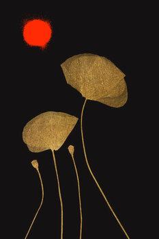 Illustration Midnight Lovers