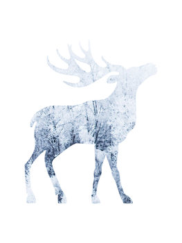 Illustration moosesnow1