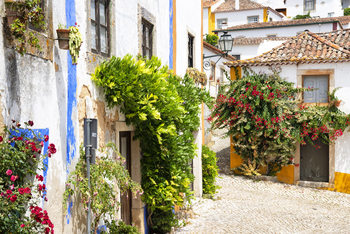 Art Print on Demand Old Town of Obidos