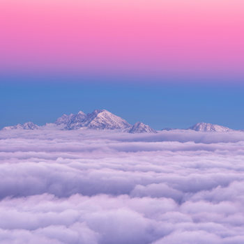 Art Print on Demand Pink in the sky