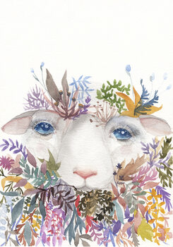 Illustration Sheep