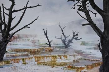 Art Print on Demand Strange Landscape