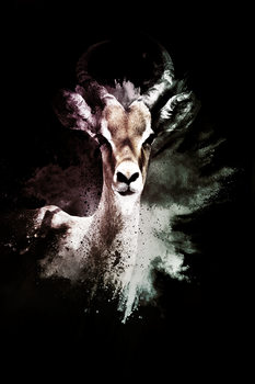 Art Print on Demand The Antelope