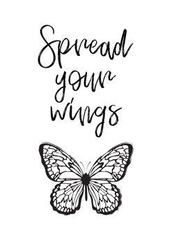 Illustration Wings