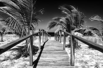 Art Print on Demand Wooden Pier on Tropical Beach