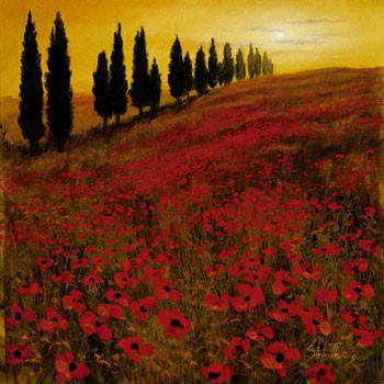 Poppies Reproduction d'art