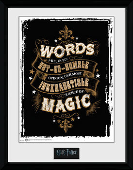 Harry Potter - Words Poster encadré en verre