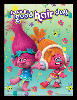 Les Trolls - Have A Good Hair Day Poster encadré en verre