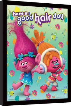 Les Trolls - Have A Good Hair Day Poster encadré en verre
