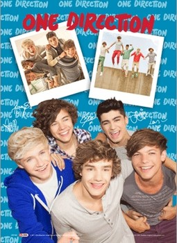 3D Poster One Direction - polaroid