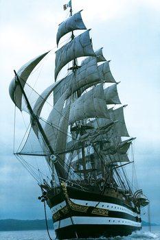 Amerigo Vespucci - sailing ship Poster