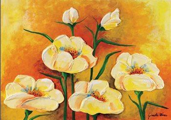 Anemones in Bloom Art Print