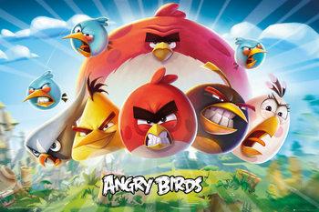 Pôster Angry Birds - Keyart