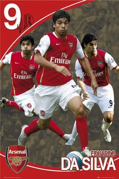 Arsenal - eduardo 07/08 Poster