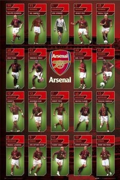 Arsenal - squad profiles 05/06 Poster