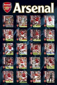 Arsenal - squad profiles 2010/2011 Poster