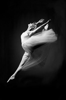 Poster  Ballerina - grace in motion
