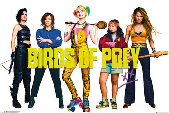 Birds Of Prey - Group Poster