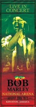 Pôster Bob Marley - concert