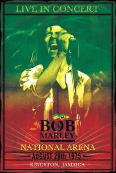 Bob Marley - concert Poster, Art Print