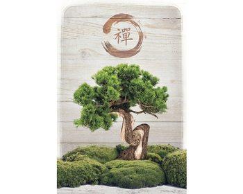 Bonsai Zen Poster