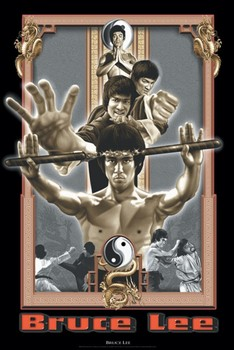 Bruce Lee - dragon's fury Poster
