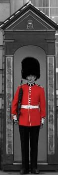 Buckingham palace guard Poster