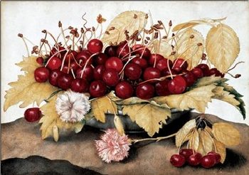 Cherries and Carnations Art Print