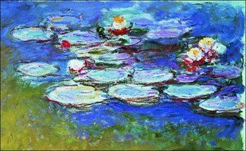 Claude Monet - Gli Agapanti Art Print