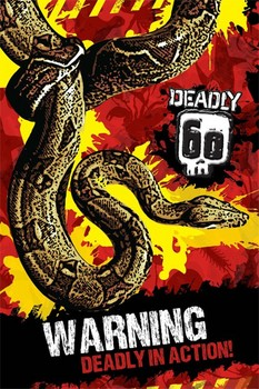 Deadly 60 - warning Poster, Art Print