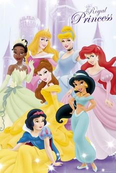 DISNEY PRINCESS - 7 princess Poster