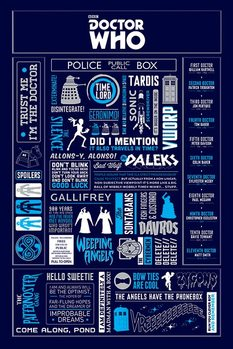 Pôster Doctor Who - Infographic