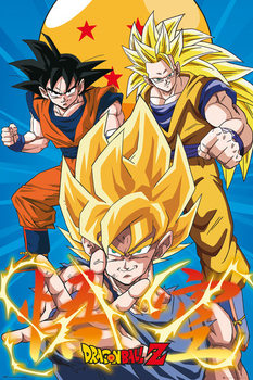 Poster Dragon Ball - Z3 Gokus Evo