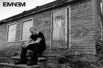 Pôster Eminem - LP 2