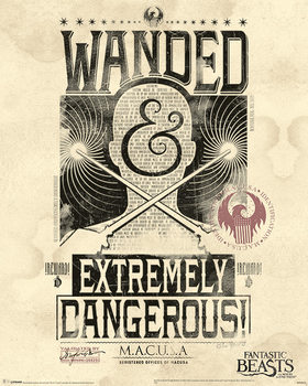 Poster  Fantastic Beasts And Where To Find Them - Extremely Dangerous