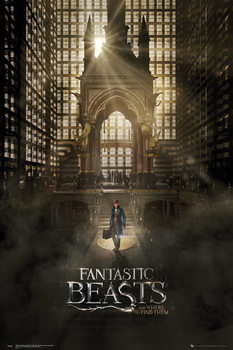 Poster Fantastic Beasts And Where To Find Them - One Sheet 1