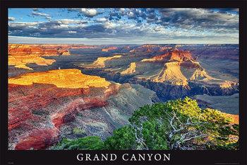 Grand Canyon - arizona / usa Poster