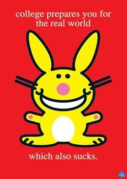 Happy bunny - college sucks Poster