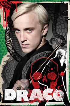 Poster Harry Potter - Draco