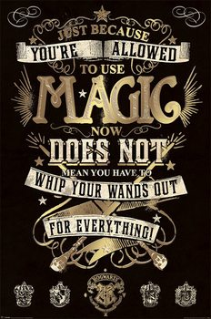 Harry Potter - Magic Poster