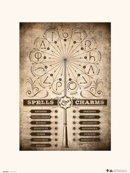 Harry Potter - Spells & Charms Art Print