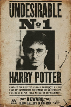 Pôster HARRY POTTER - undersirable n1