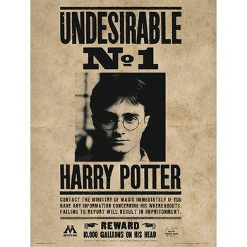 Harry Potter - Undesirable No1 Art Print