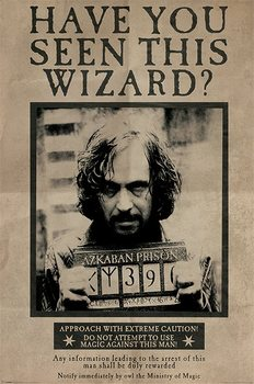 Pôster Harry Potter - Wanted Sirius Black