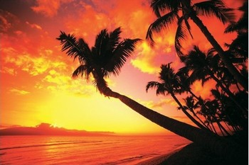 Hawaiian Sunset II Poster