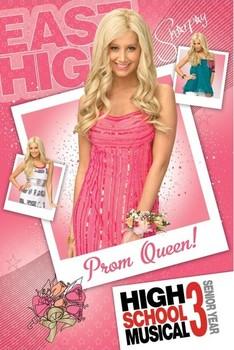 HIGH SCHOOL MUSICAL 3 - sharpey Poster