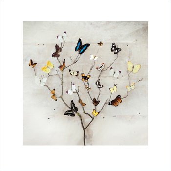 Ian Winstanley - Tree of Butterflies Art Print