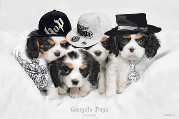 Keith Kimberlin - gangsta pups Poster