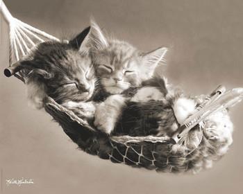 KEITH KIMBERLIN - hammock Poster