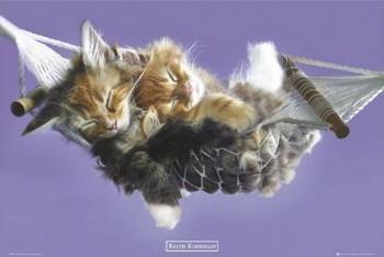 Poster Keith Kimberlin - hammock